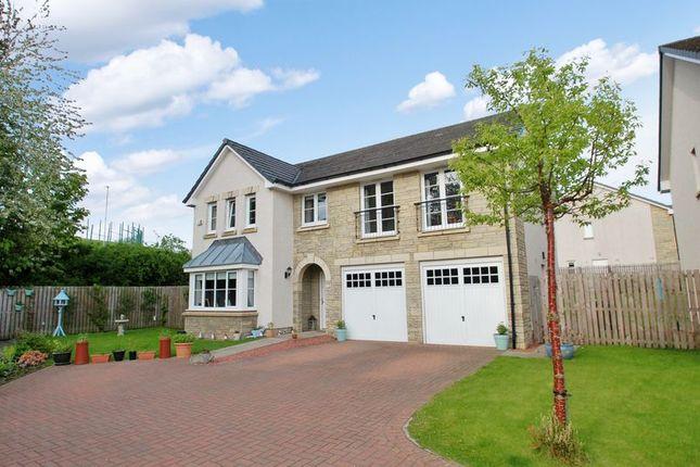 Thumbnail Detached house for sale in Alder Lane, Lanark