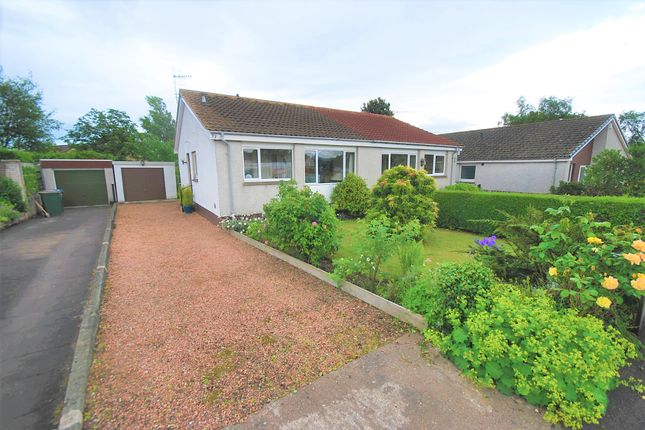 Thumbnail Bungalow for sale in Turleum Road, Creiff