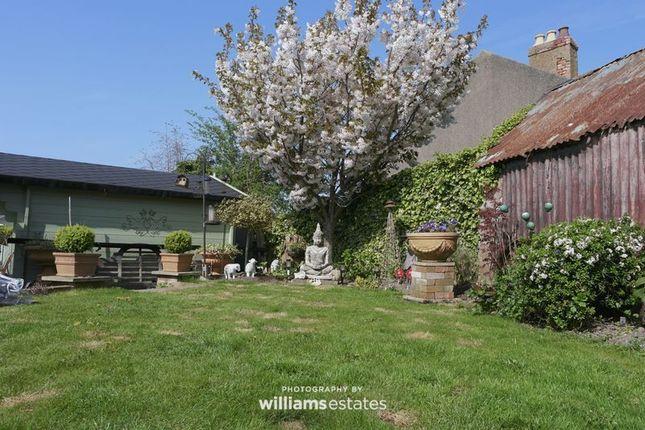 Garden of Parc Y Llan, Henllan, Denbigh LL16