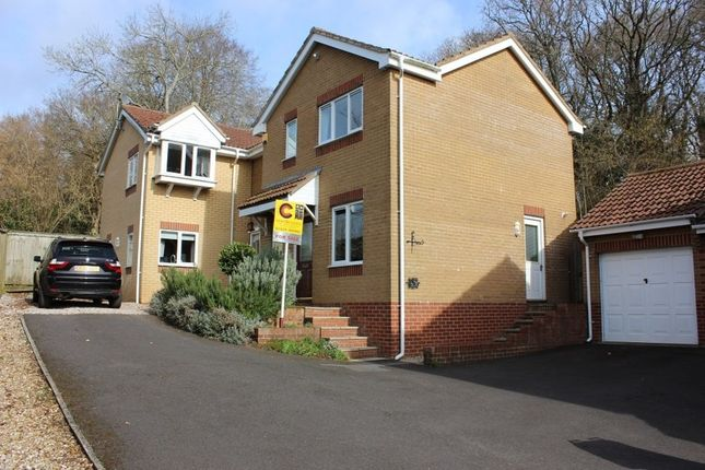 Thumbnail Detached house for sale in Abbotswood, Kingsteignton, Newton Abbot