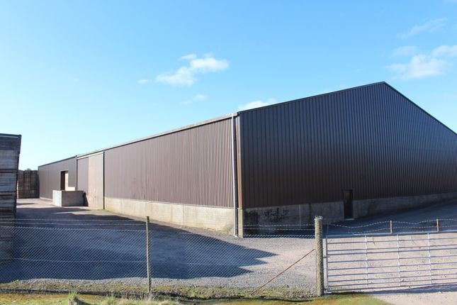 Thumbnail Industrial to let in Scott Street, Brechin