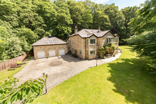 Thumbnail Country house for sale in Bridge Burn Lodge, Ridley Mill, Northumberland