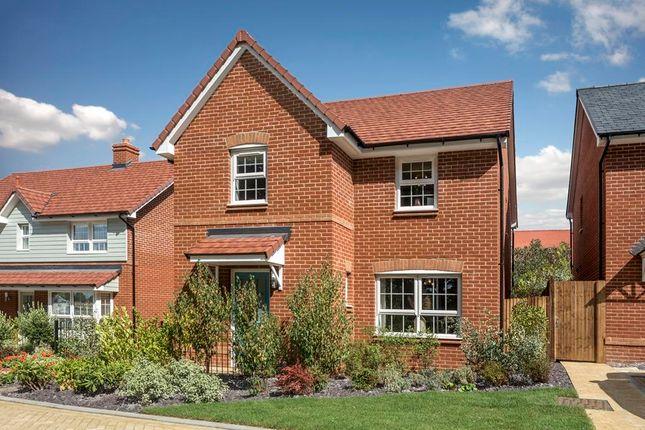 """3 bed semi-detached house for sale in """"Kingsley"""" at Brogdale Road, Ospringe, Faversham ME13"""