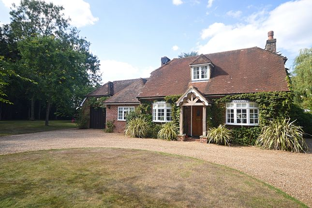 Thumbnail Detached house for sale in The Street, Long Sutton, Hook