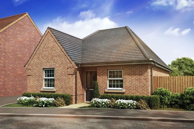 "Thumbnail Bungalow for sale in ""Belton"" at Station Road, Langford, Biggleswade"