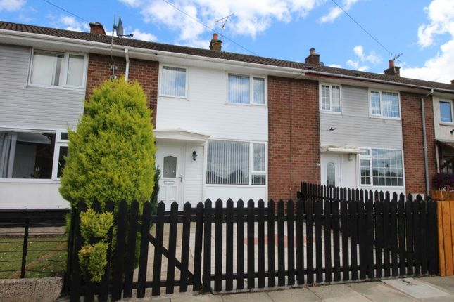 Thumbnail Terraced house to rent in Carnroe Drive, Greenisland, Carrickfergus