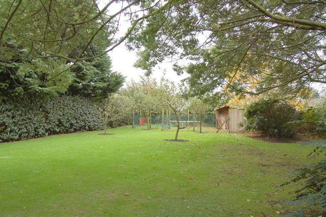 Garden of Choisi, La Vielle Rue, St Sampson GY2