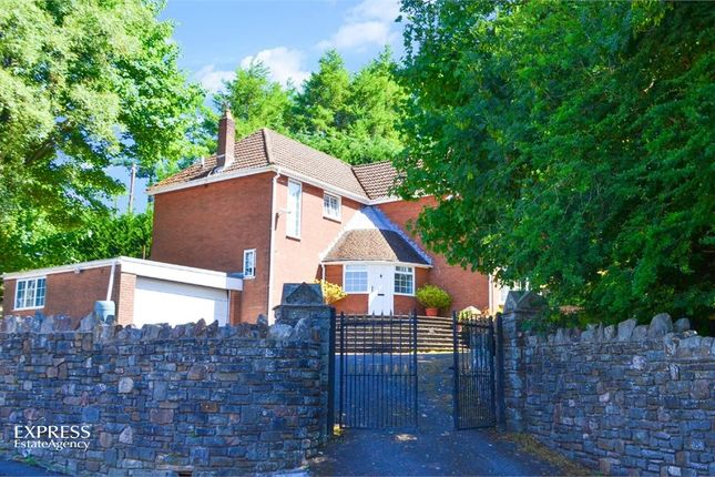 Thumbnail Detached house for sale in St James Close, Tredegar, Blaenau Gwent
