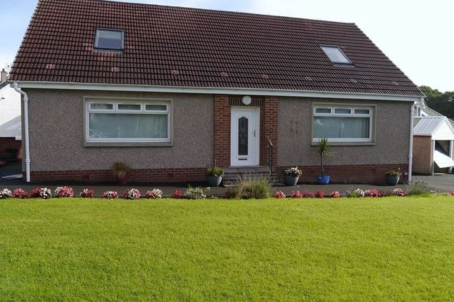 Thumbnail Bungalow for sale in Catrine Crescent, Motherwell