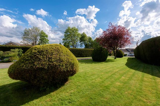 Thumbnail Bungalow for sale in York Place, Low Ackworth