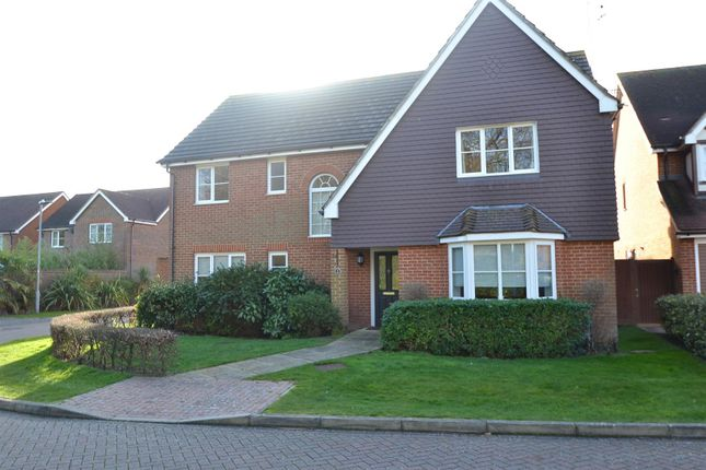 Thumbnail Detached house for sale in Regents Place, Eastbourne
