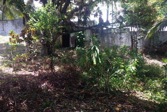 Thumbnail Land for sale in Portsmouth, Saint John Parish, Dominica