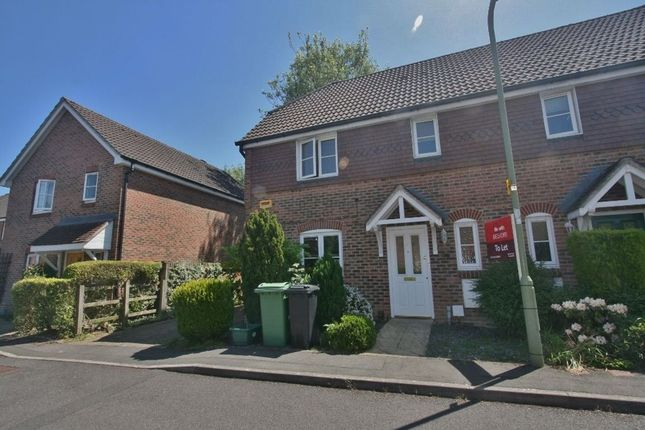 Thumbnail Semi-detached house to rent in Lanes End, Chineham, Basingstoke