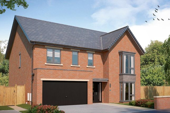 """Thumbnail Detached house for sale in """"The Kirkham"""" at Hastings Road, Sheffield"""
