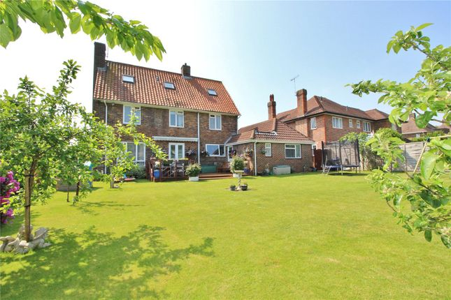 Thumbnail Detached house for sale in Forest Road, Broadwater, Worthing, West Sussex