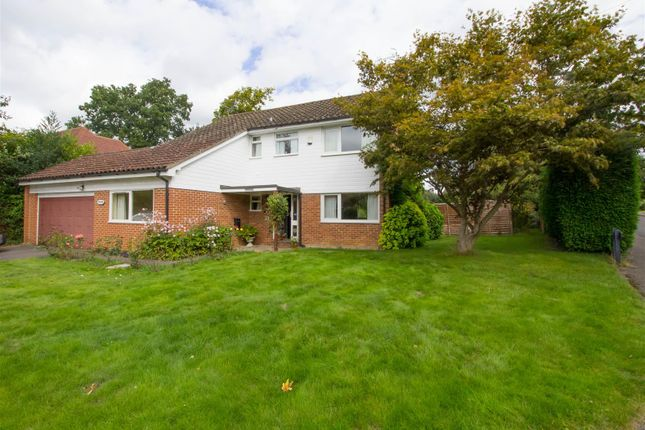 Thumbnail Detached house to rent in Woodland Avenue, Cranleigh