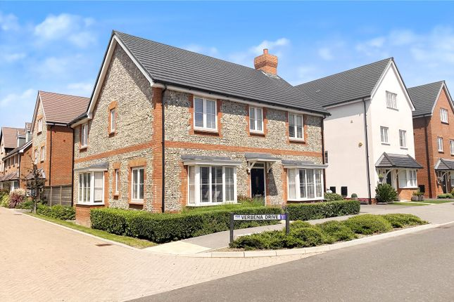 Thumbnail Detached house for sale in Verbena Drive, Angmering, West Sussex