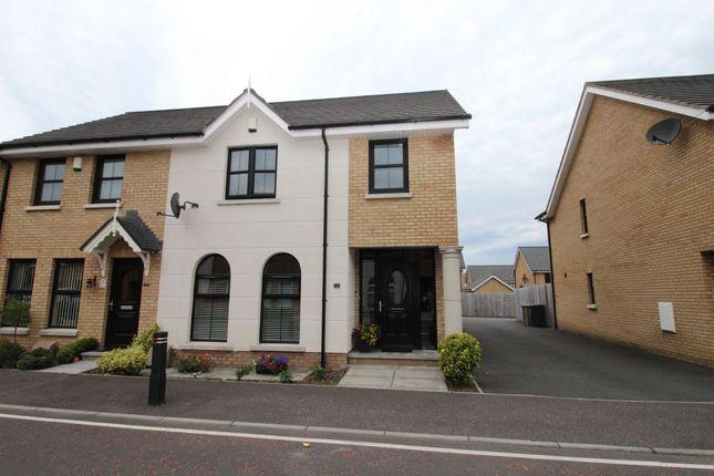 Thumbnail Semi-detached house to rent in Mornington Gardens, Lisburn