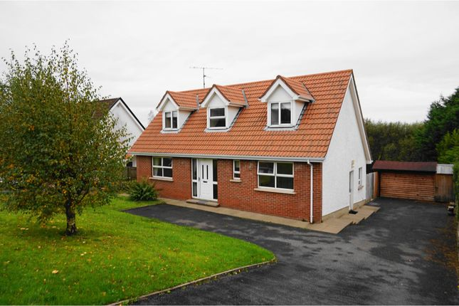 Detached house for sale in St Julians Brae, Omagh