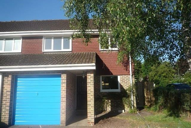 Thumbnail Semi-detached house to rent in Sycamore Drive, Kings Worthy, Winchester