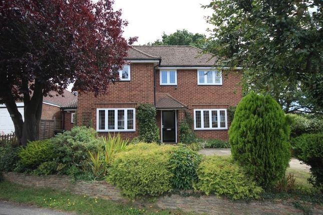 Thumbnail Detached house to rent in Grove Avenue, Grove Avenue, Harpenden