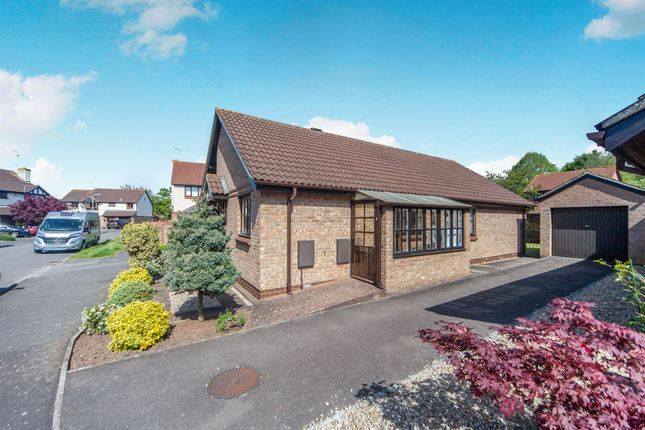 Thumbnail Bungalow for sale in The Oaks, Taunton