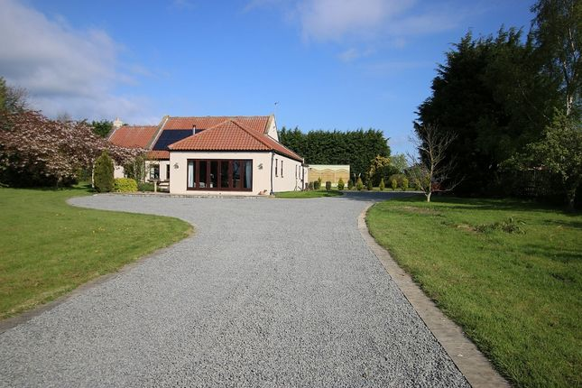 Thumbnail Detached house for sale in Holly Moor Lodge, Aldbrough St John, Richmond, North Yorkshire