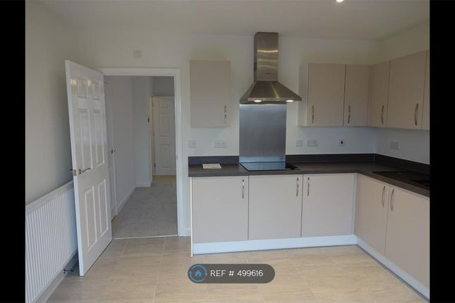 Thumbnail Terraced house to rent in Magnolia Avenue, Rugby
