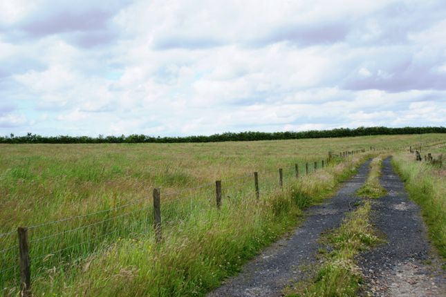 Thumbnail Land for sale in Edge Lane, Maiden Law, County Durham