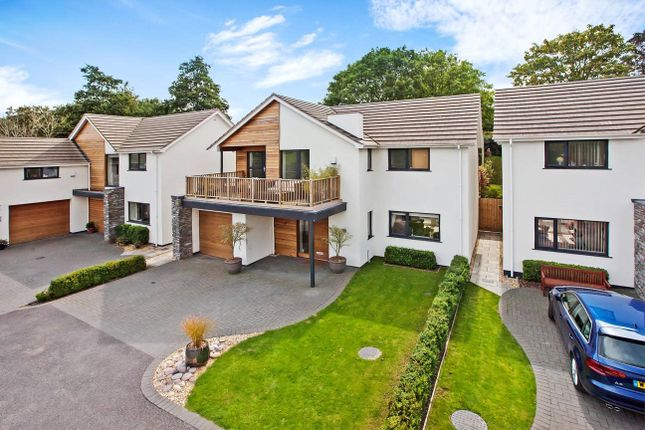 Thumbnail Detached house for sale in The Fairway, Exeter