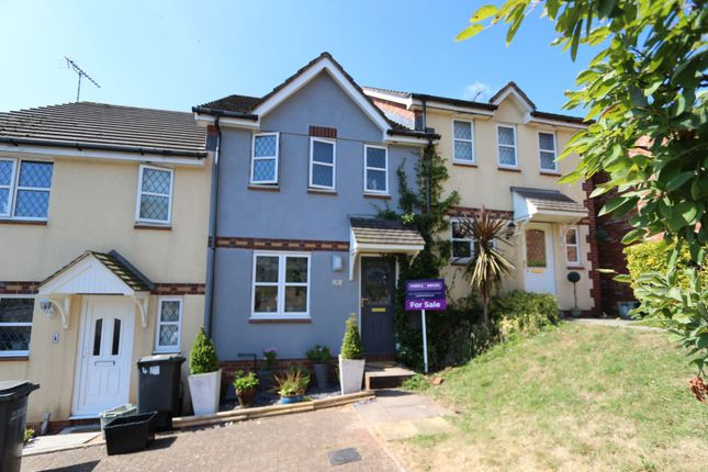 Thumbnail Terraced house for sale in Teal Close, Torquay