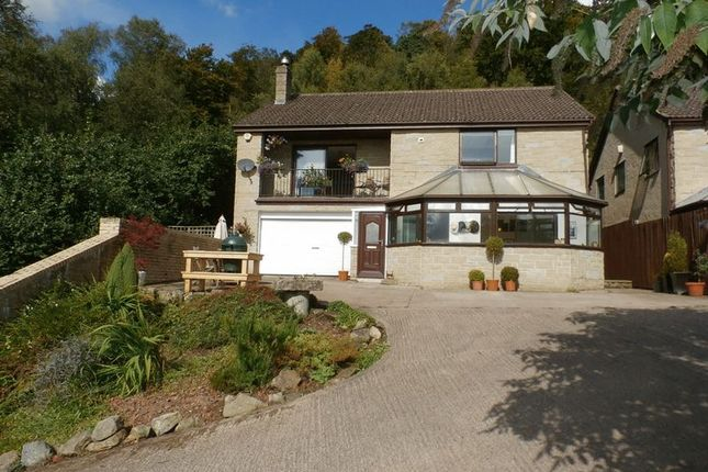 Thumbnail Detached house for sale in Rothbury, Hillside, Apperley House