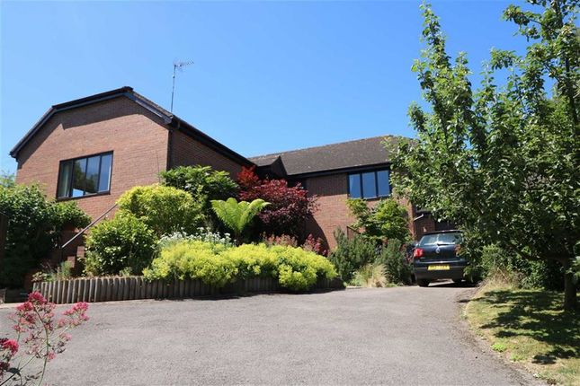 Thumbnail Detached house for sale in Cliffords Mesne, Newent