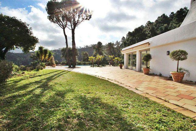 Thumbnail Villa for sale in Saint Jean De Lesterel, Provence-Alpes-Cote D'azur, 83600, France