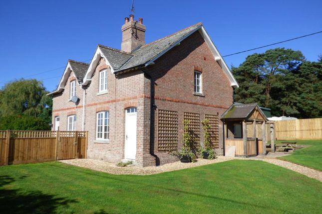 Thumbnail Semi-detached house to rent in Heath Cottage, Islington Road, Bockhampton, Dorchester