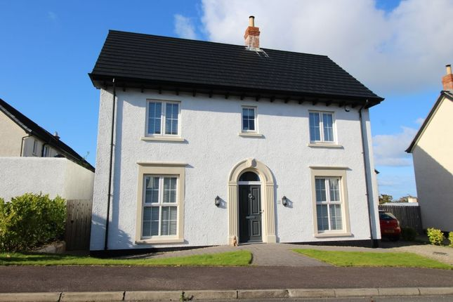 Thumbnail Detached house for sale in Lislaynan, Ballycarry, Carrickfergus