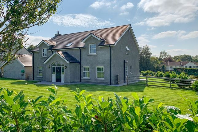 Thumbnail Detached house for sale in Old Ballynahinch Road, Lisburn