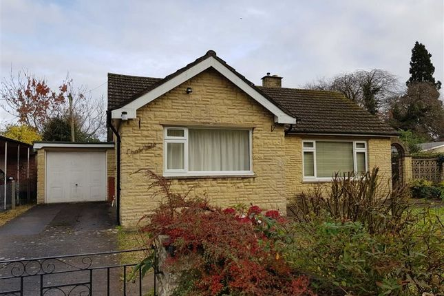Thumbnail Detached bungalow to rent in May Meadow Lane, Mitcheldean
