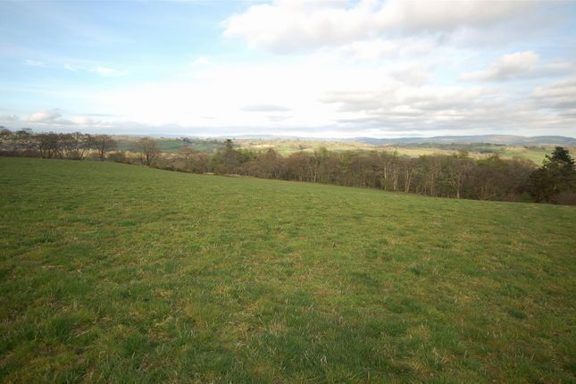 Land for sale in Llangeitho, Tregaron