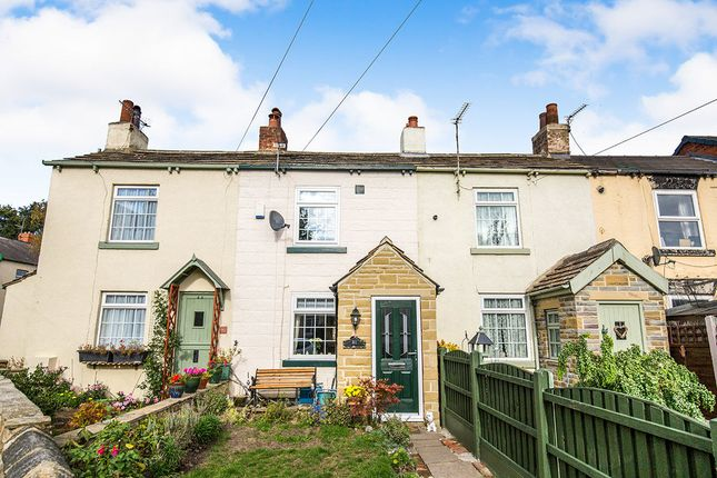 Thumbnail Terraced house to rent in Primrose Road, Leeds