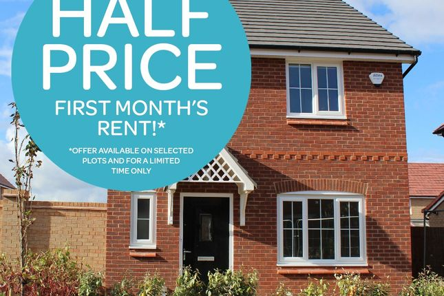 Thumbnail Semi-detached house to rent in Pool Avenue, Prescot, Merseyside