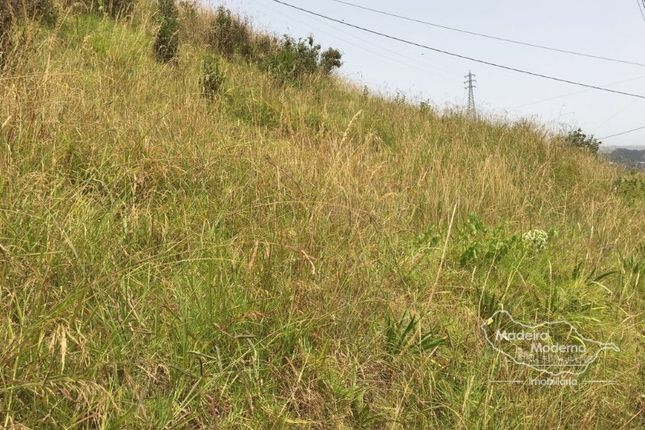 Land for sale in Câmara De Lobos, Câmara De Lobos, Câmara De Lobos