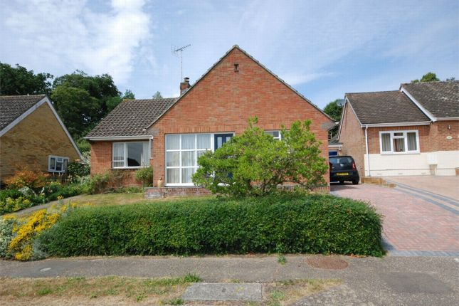 Thumbnail Detached bungalow for sale in Ashlong Grove, Halstead, Essex