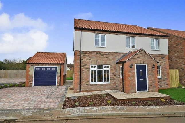 Thumbnail Detached house for sale in Chapel Close, Hambleton, Selby