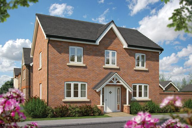 """Thumbnail Detached house for sale in """"The Chestnut """" at Haygate Road, Wellington, Telford"""