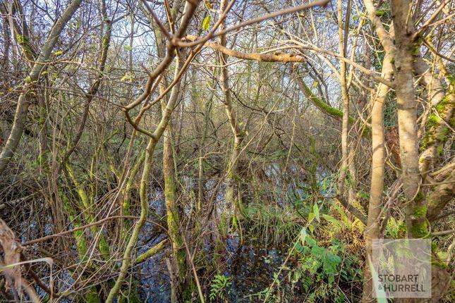 Plot 45 Crabbetts Marsh, Horning, Norfolk NR12