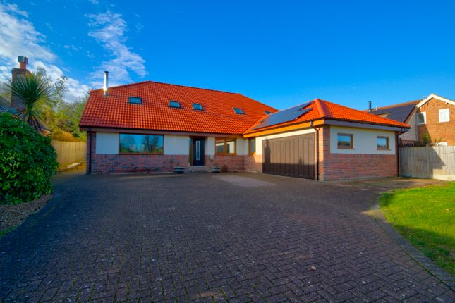 Thumbnail Detached house for sale in Canterbury Road, Barham, Canterbury