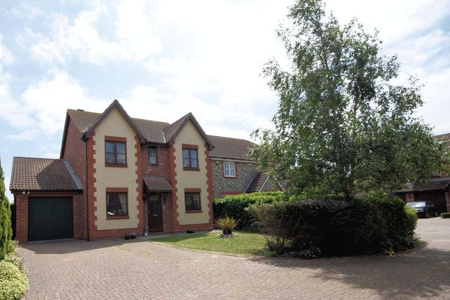Thumbnail Detached House For Sale In Grafton Close Priddys Hard Gosport