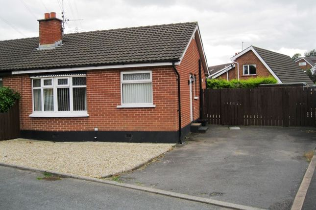 Thumbnail Bungalow to rent in Upper Malvern Road, Belfast