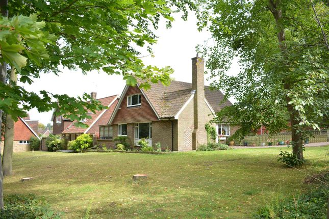 Thumbnail Detached house for sale in Treadwell Road, Epsom